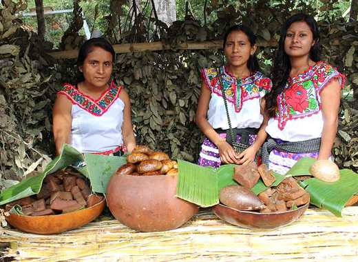 Photo of two women in the market at Oaxaca, Mexico.
