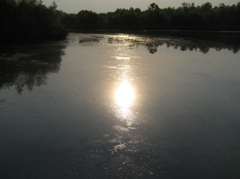 Photo of moon rising over Canadian island.